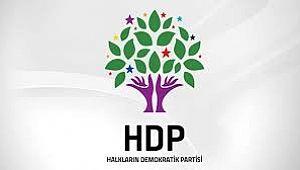 HDP Erzurum Adayları Belli Oldu