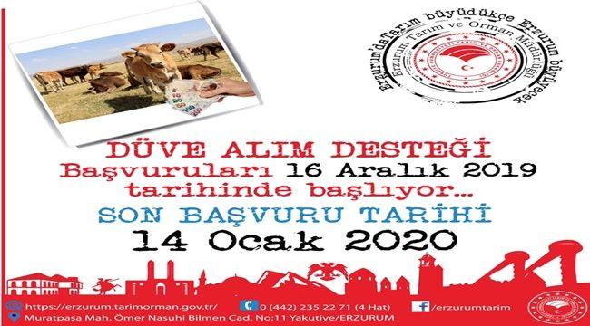 DÜVE ALIM DESTEĞİ BAŞVURULARI BAŞLIYOR...